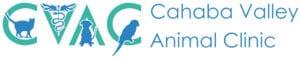 CVAC-logo-with-name-full-large-2