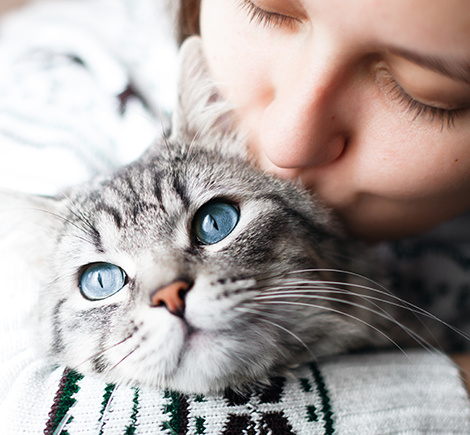 woman kissing gray cat